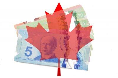 Sticker Canadien, érable, feuille, dollars, blanc, fond
