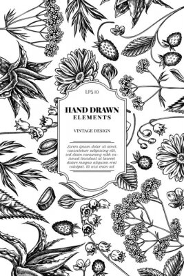 Sticker Card design with black and white aloe, calendula, lily of the valley, nettle, strawberry, valerian