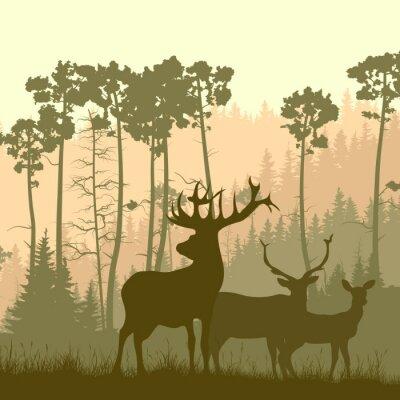 Sticker Carré, Illustration, sauvage, wapiti, bord, forêt
