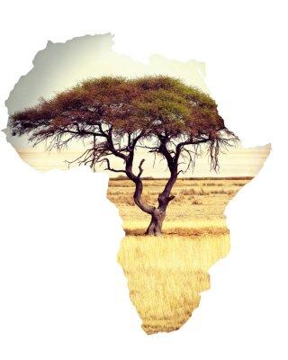 Sticker Carte, afrique, continent, concept, acacia