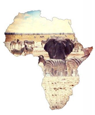 Sticker Carte, afrique, continent, concept, safari, waterhole, éléphants