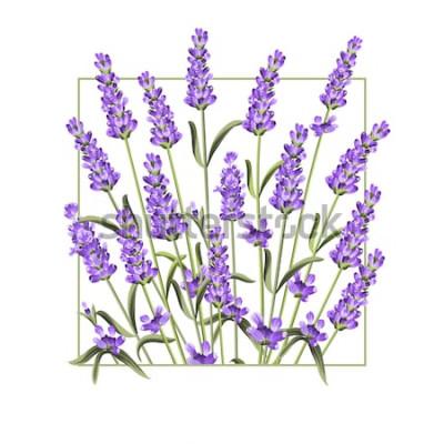 Sticker Carte élégante avec des fleurs de lavande. Le cadre rectangle lavande et le texte été. Bordure de lavande pour votre présentation de texte. Illustration vectorielle