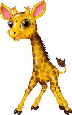 Sticker Cartoon bébé girafe isolé sur fond blanc
