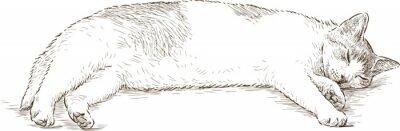Sticker chat dormant