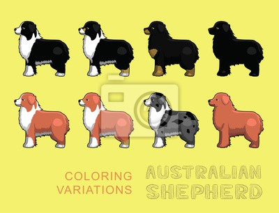 Sticker Chien Berger Australien Coloriage Variations Vector Illustration