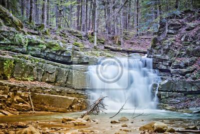 Chute d'eau dans la montagne des Carpates, Ukraine