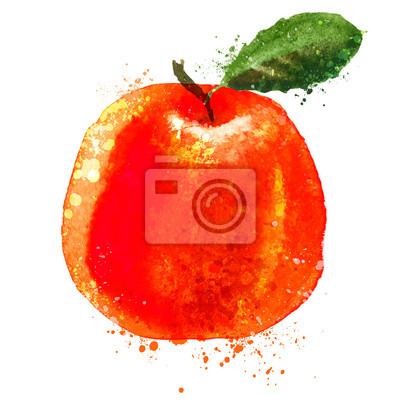 Citrus vector logo design template. fruit or food icon.