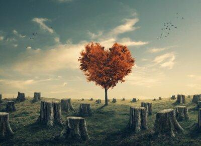 Sticker Coeur, Formé, arbre, clair, forêt