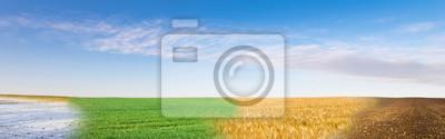 Sticker Collage panoramique du champ quatre saisons sous un ciel bleu
