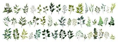 Sticker Collection de feuilles de verdure plantes forestières herbes tropicales feuilles