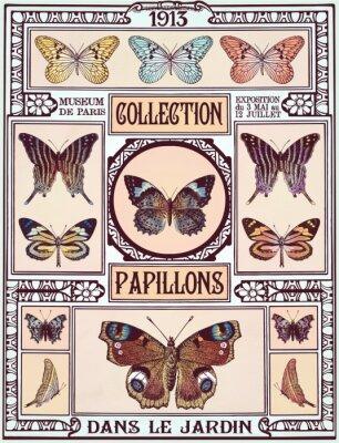 Sticker collection de papillons