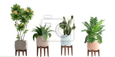 Sticker collection de plantes ornementales en pots