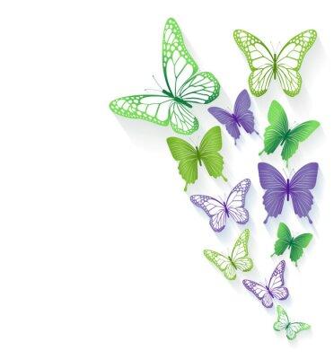 Sticker Colorful Butterflies réalistes isolés pour le printemps