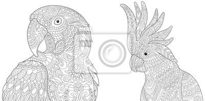 Coloriage Anti Stress Perroquet.Sticker Coloriage De La Collection De Laralla Ara Et Des Perroquets