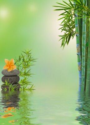 Sticker Composition aquatique relaxation massage zen