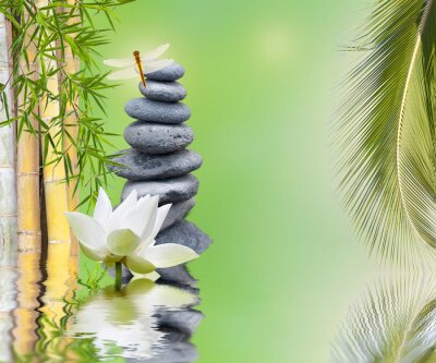 Sticker Composition Bambou Galets palmier aquatique zen