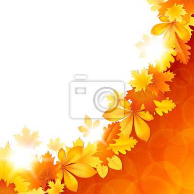 Contexte de feuilles d'automne