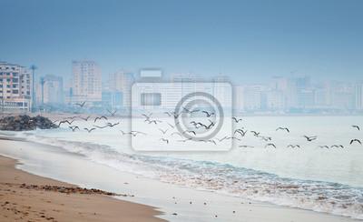 Côte de l'océan Atlantique, froid matin sur la plage. Tanger, Morocc
