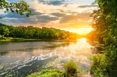 Coucher de soleil sur la rivière dans la forêt