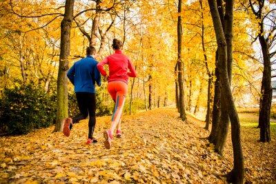 Sticker Couple de jogging à l'automne la nature