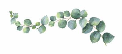 Sticker Couronne de vecteur aquarelle avec des feuilles et des branches d'eucalyptus vert.