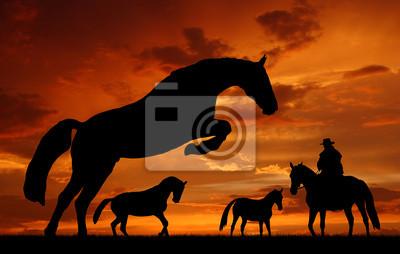cow-boy silhouette avec des chevaux dans le coucher du soleil