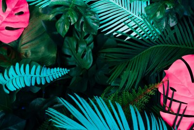 Sticker Creative fluorescent color layout made of tropical leaves. Flat lay neon colors. Nature concept.