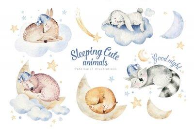 Sticker Cute dreaming cartoon animal deer, bear hand drawn watercolor illustration. Sleeping rabbit charecher kids nursery wear fashion design, baby cartoon and fox
