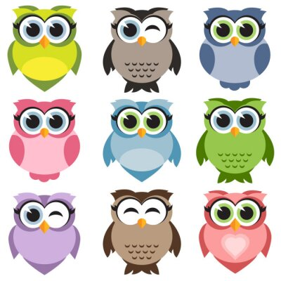 Sticker Cute owls set