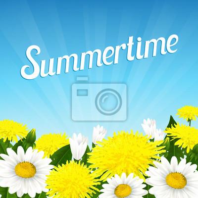 D'été de belles fleurs