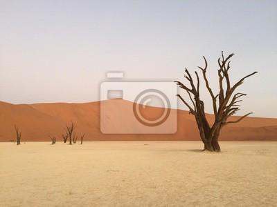 Sticker Dead Vlei, Namibie