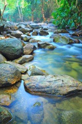 Sticker Débit de l'eau à travers les roches dans un ruisseau peu profond en Malaisie Jungle