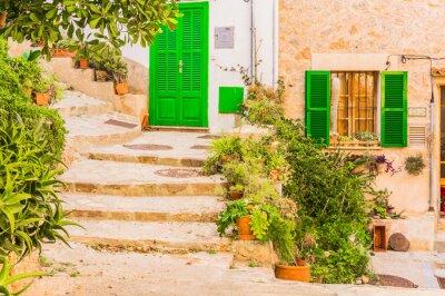 Sticker Décoration végétale typique d'un vieux village méditerranéen rustique