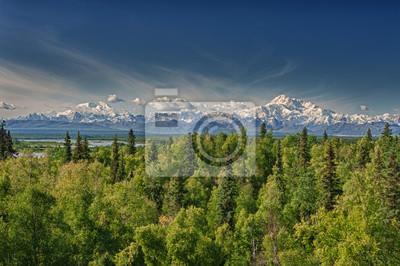 Denali Park Alaska Grand Panorama avec Mc Kinley Montagne