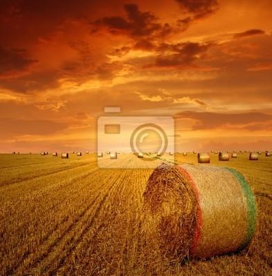 Des ballots de paille sur les terres agricoles avec un ciel rouge nuageux