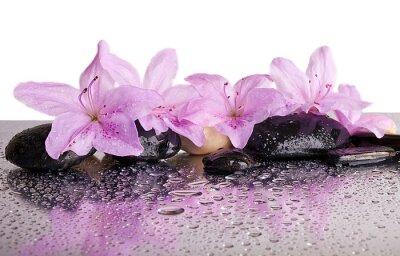 Sticker des fleurs et des pierres noires avec la réflexion