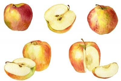 Sticker Dessin Apple en aquarelle