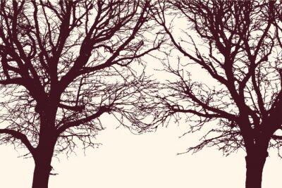 Sticker Deux arbres