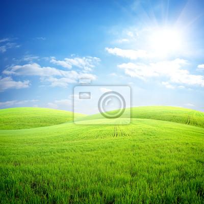 Domaine de l'herbe fraîche