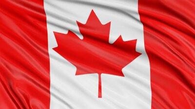 Sticker Drapeau 3D Canada