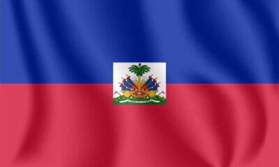 Drapeau d'Haïti Drapeau agitant réaliste de la République d'Haïti. Tissu drapeau flottant texturé de Hayti.