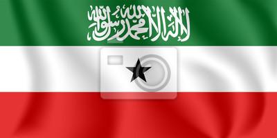 Drapeau du Somaliland. Drapeau agitant réaliste de la République du Somaliland. Drapeau fluide texturé de tissu du Somaliland.
