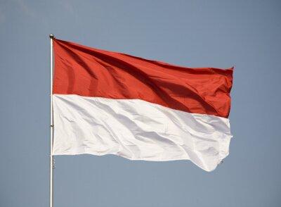Sticker Drapeau indonésien