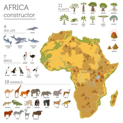 Sticker Éléments floraux et fauniques de la carte de la flore africaine. Animaux, b