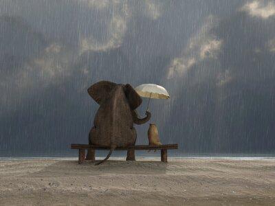 Sticker éléphant et le chien assis sous la pluie