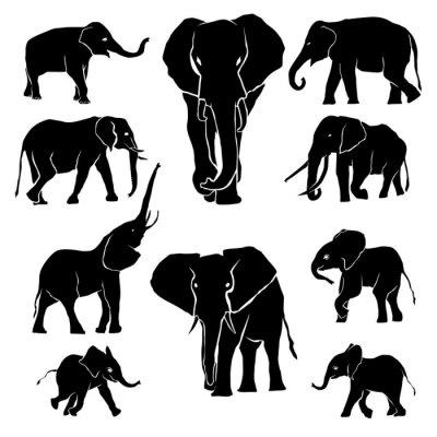 Sticker Elephant Silhouette Paquet