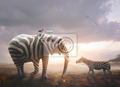 Sticker Elephant with zebra stripes