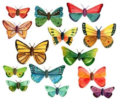 Sticker Ensemble, beaucoup, différent, aquarelle, papillons, blanc, fond