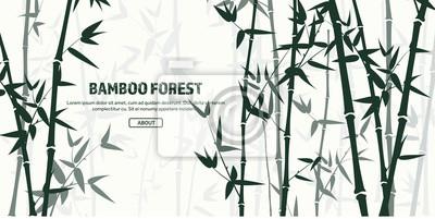 Superbe Sticker Ensemble De Forêt De Bambou. La Nature. Japon., Chine. Plante