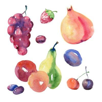 Sticker Ensemble de fruits aquarelle
